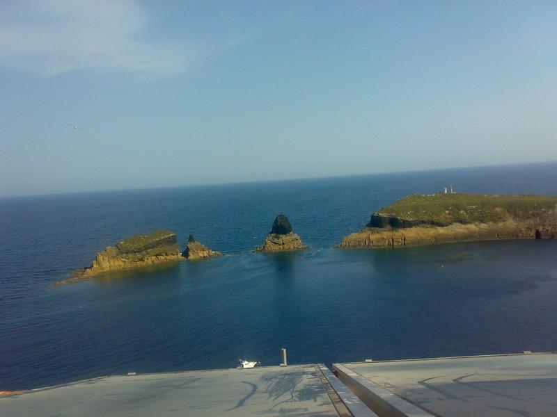 visita-islas-columbretes-82