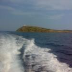 visita-islas-columbretes-84