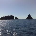 visita-islas-columbretes-87