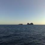 visita-islas-columbretes-90