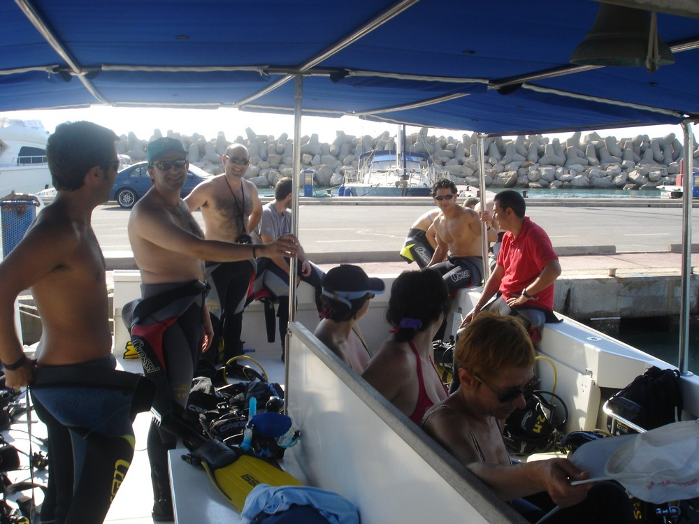 catamaran cuatro barracuda