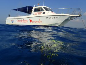 catamaran cuatro islas columbretes