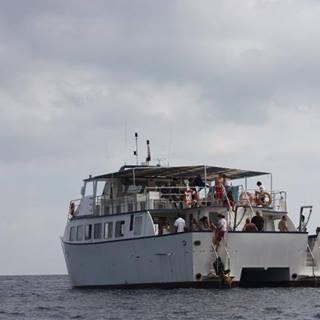Catamaran Clavel1